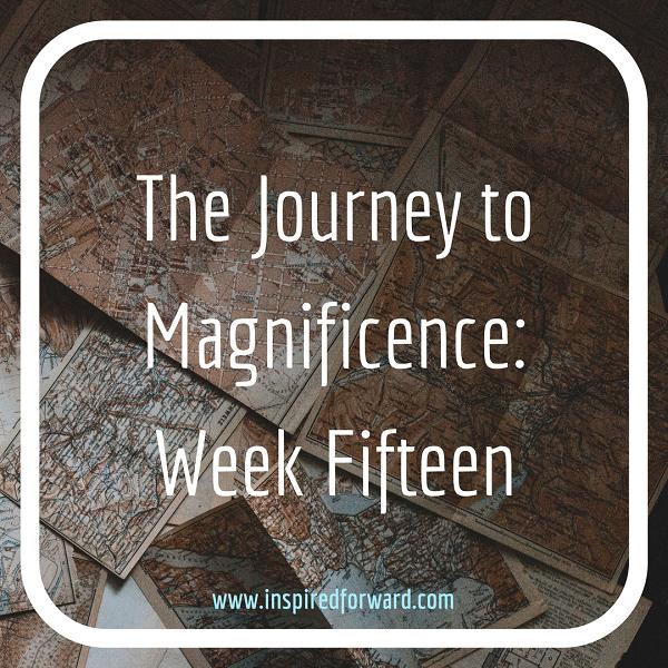 JTM Week Fifteen Instagram