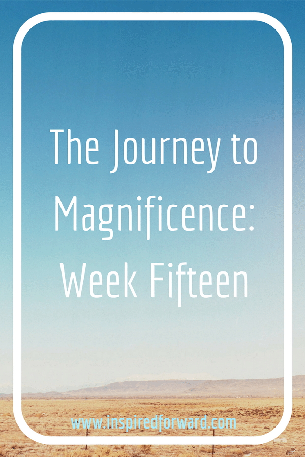JTM Week Fifteen Pinterest v3