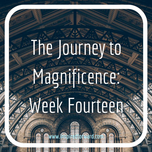 JTM Week Fourteen Instagram