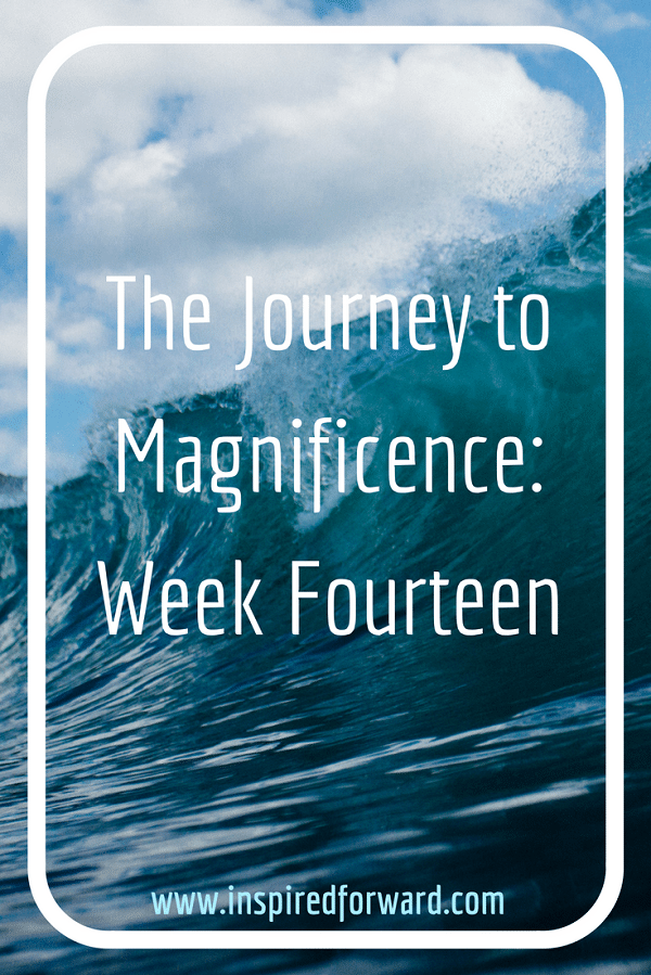 JTM Week Fourteen Pinterest v2