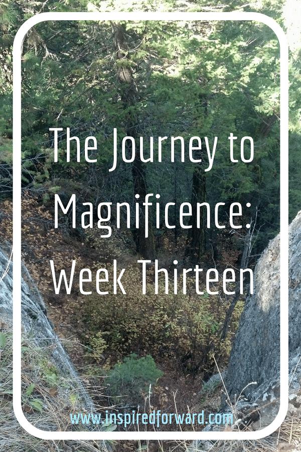 JTM Week Thirteen Pinterest v2
