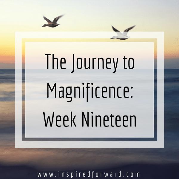 week-nineteen-instagram-v1