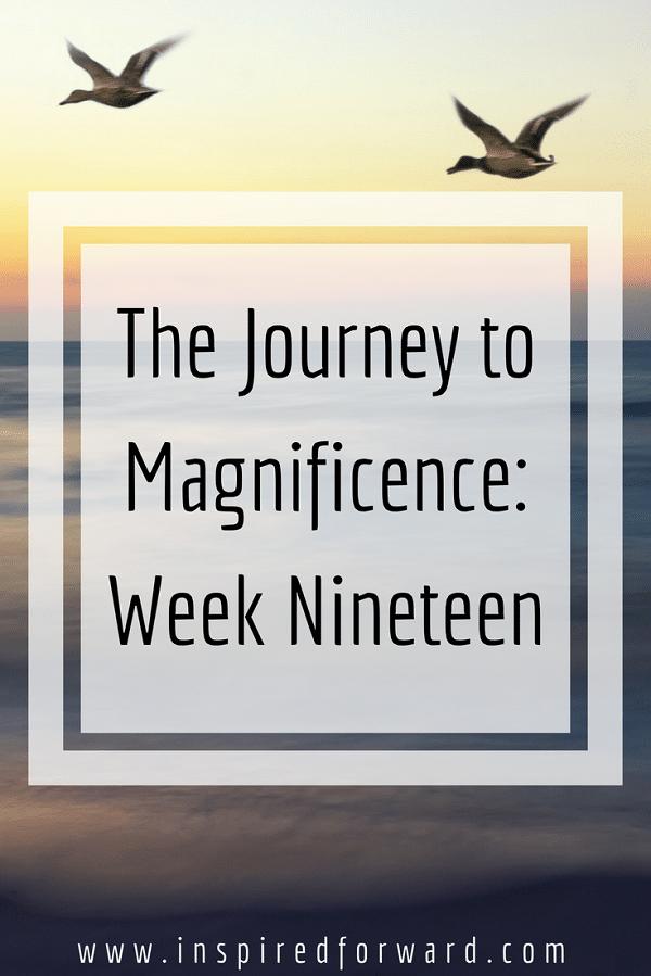 week-nineteen-pinterst-v1