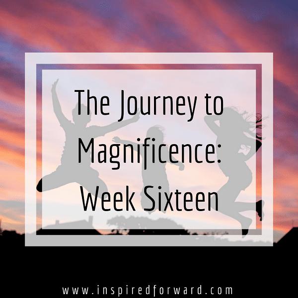 week-sixteen-instagram-v1
