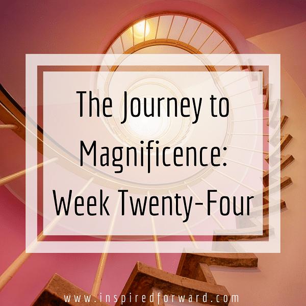 week twenty-four instagram-v1