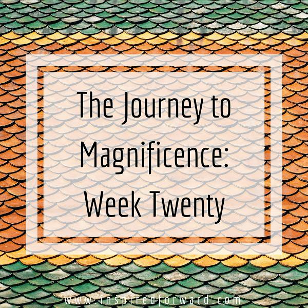 week twenty instagram-v1