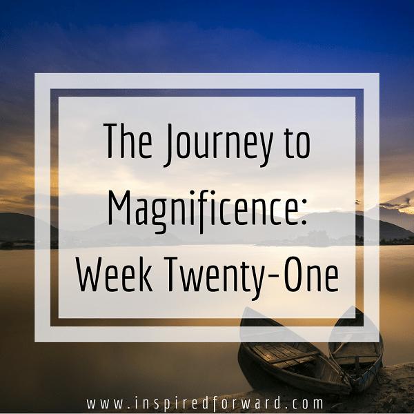 week twenty-one instagram-v1