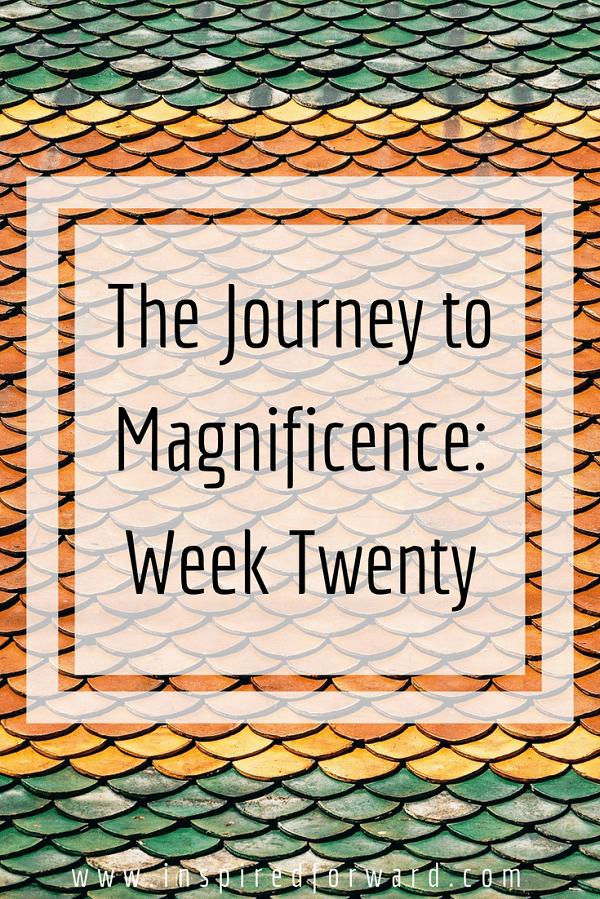 week twenty pinterst-v1