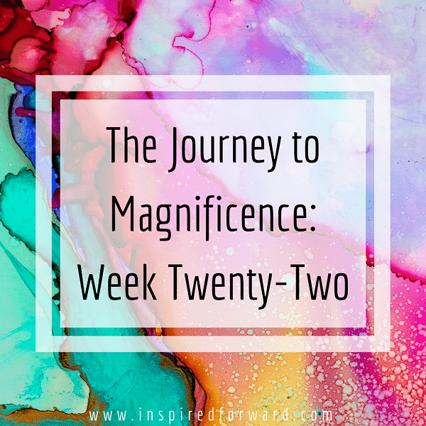 week twenty-two instagram-v1