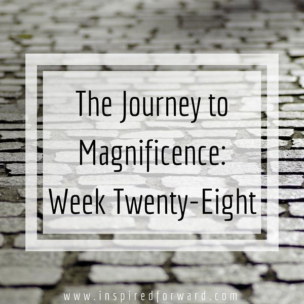 week twenty-eight instagram-v1