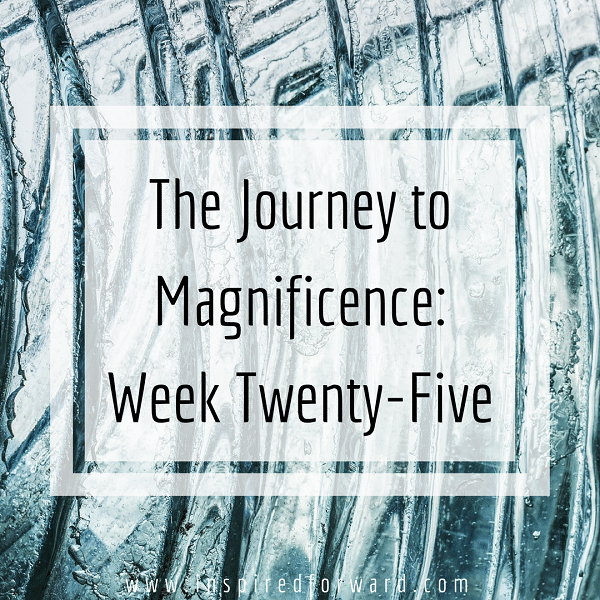 week twenty-five instagram-v1