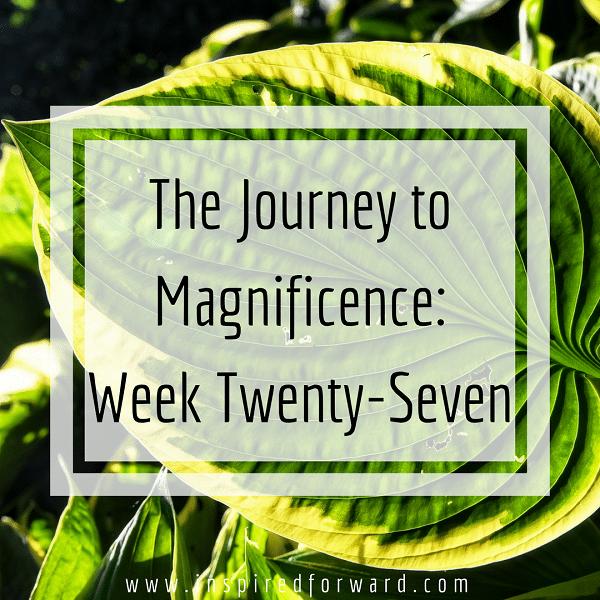 week twenty-seven instagram-v1