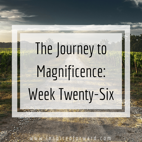 week twenty-six instagram-v1