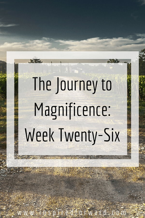 week twenty-six pinterst-v1
