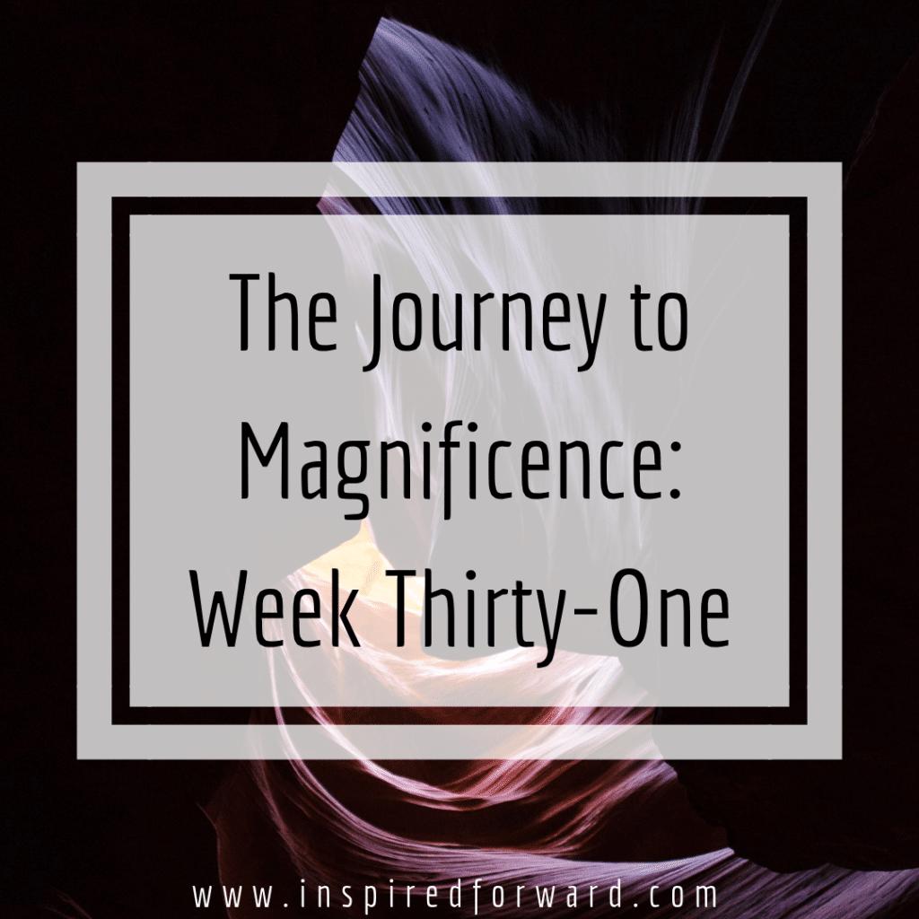 week thirty-one instagram