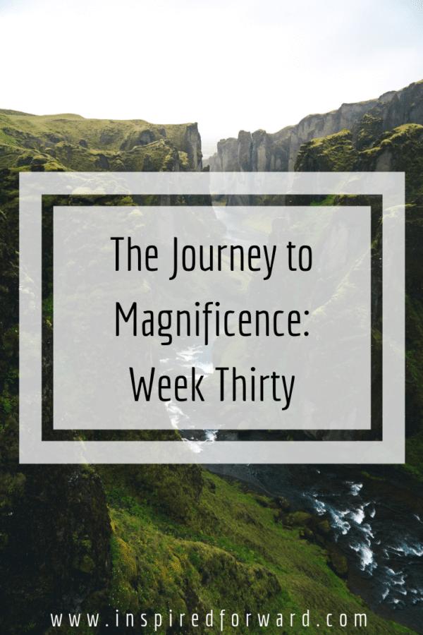 week thirty pinterest