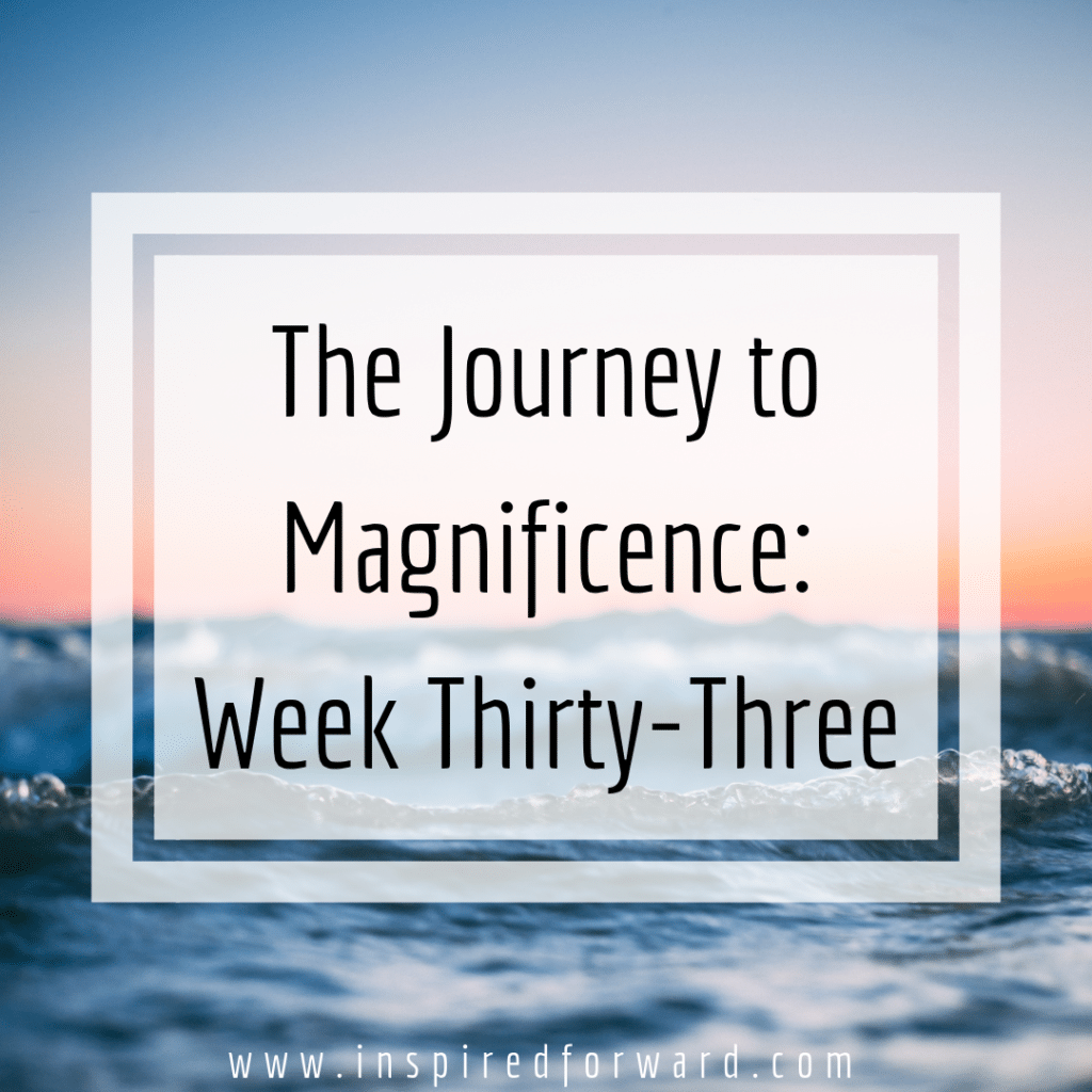 week thirty-three instagram