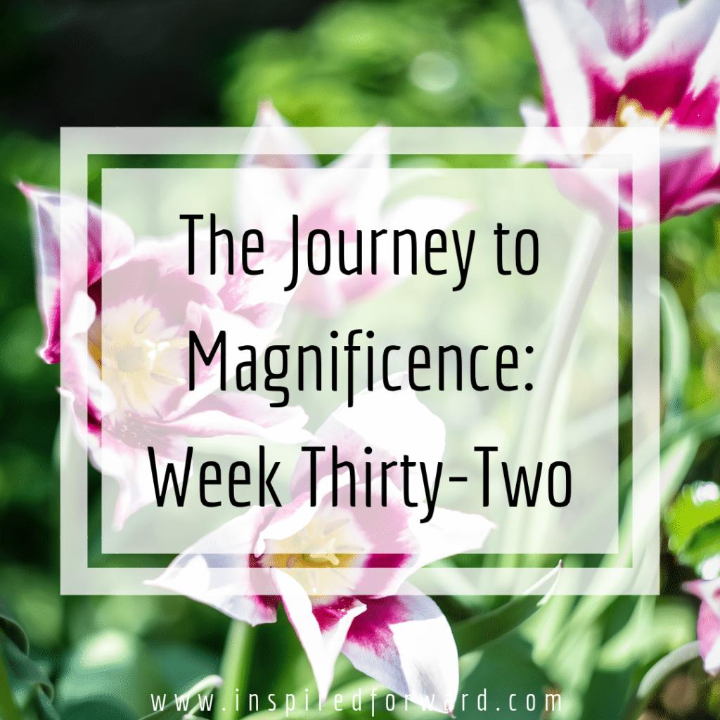 week thirty-two instagram