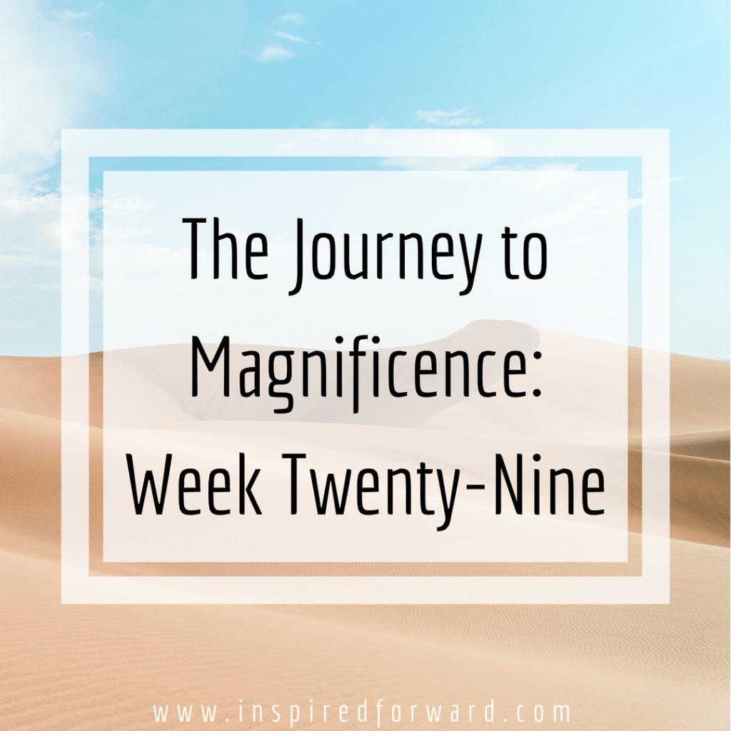 week twenty-nine instagram