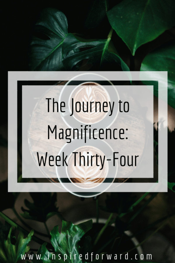 week thirty-four pinterest