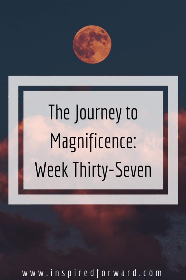 week thirty-seven pinterest