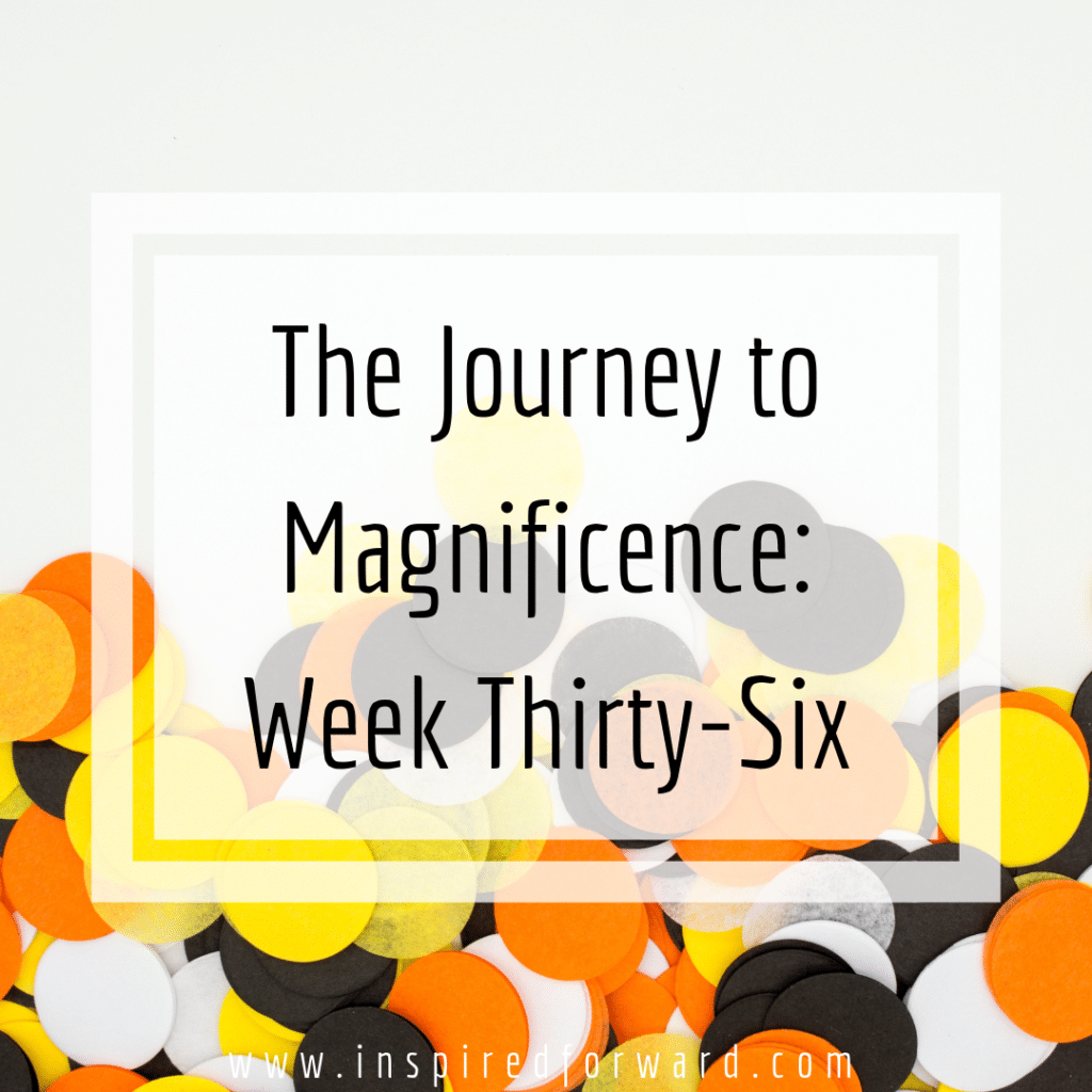 week thirty-six instagram