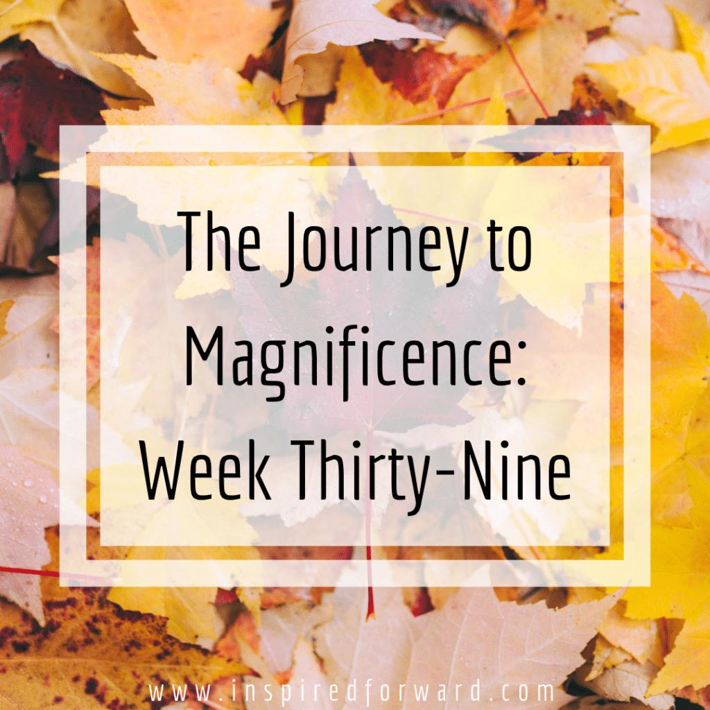 week thirty-nine instagram