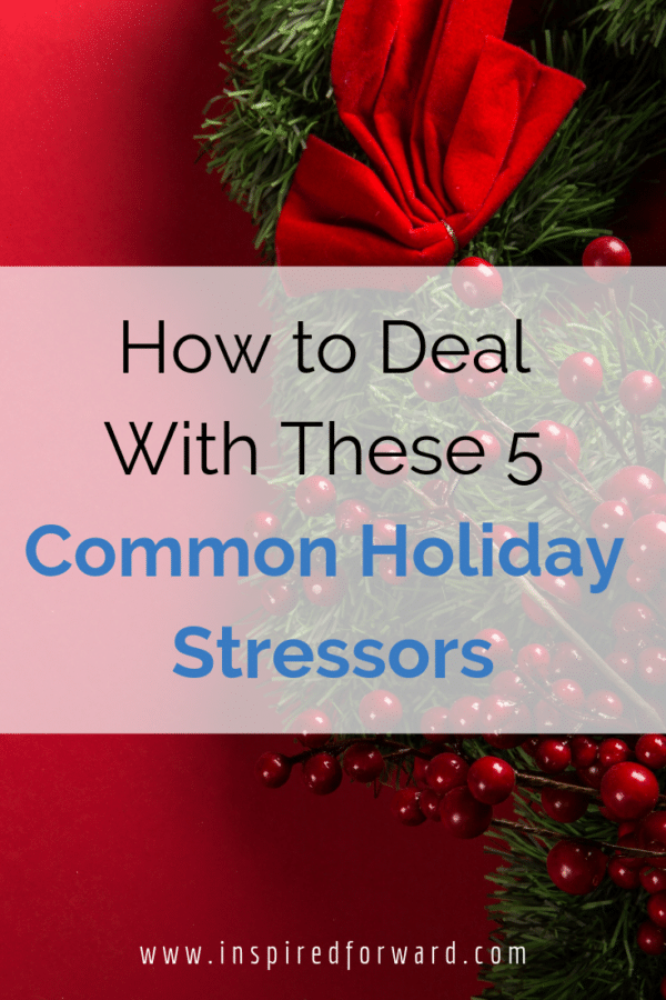 How much time do you spend worrying about these 5 common holiday stressors? Learn tips and tactics to maintain your sanity and stay calm during Christmas.
