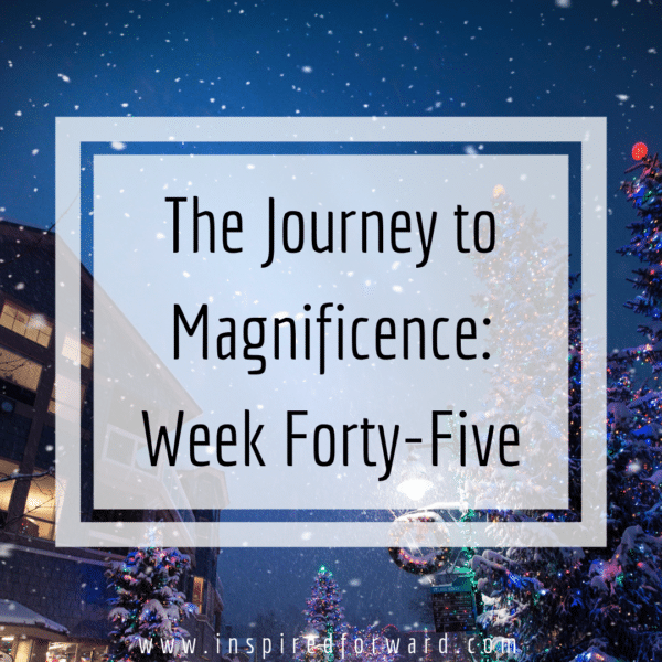 Week forty-five passed in a flurry of working in online courses, clarifying my 2019 goals, and decluttering our office closet.