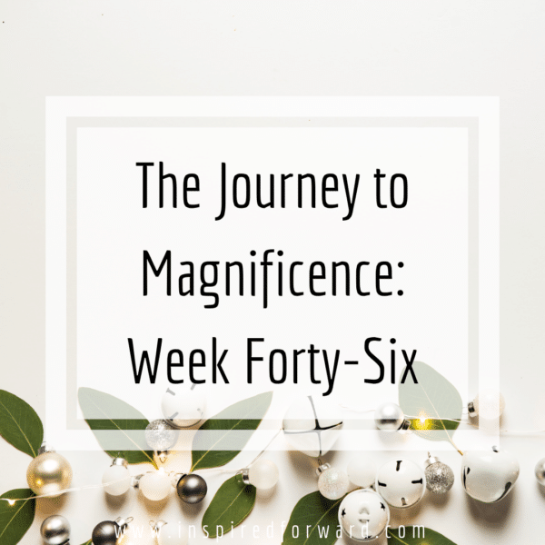 Week forty-six -- the last full week of 2018, filled with both relaxation and scrambling, seeing friends and planning goals. 2019 is basically here!