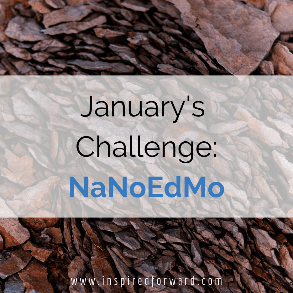 """The first 2 months of the year are """"What's Next?"""" after writing a book, also called NaNoEdMo. This month I'm going to finish writing and start self-editing."""