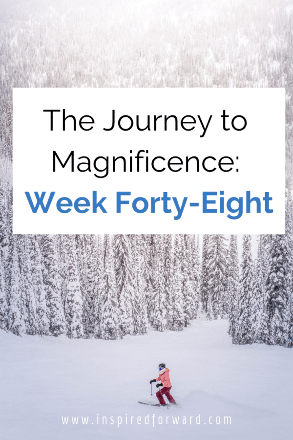 Week forty-eight had me mostly hitting my targets, except for my book word count. But I did submit a guest post, and started the Living Well Planner!