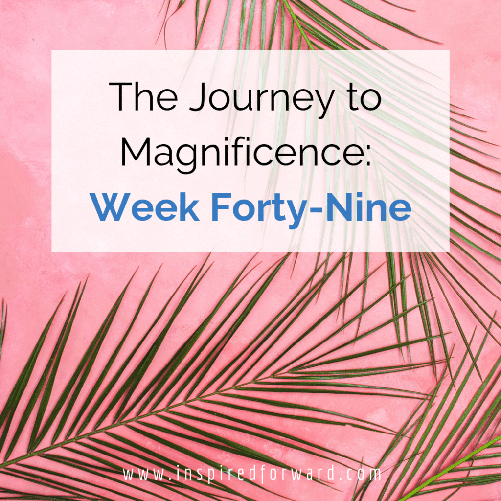 """Week forty-nine ended up turning my """"champagne moment"""" on its head because VA pitching pays off! Stepping outside of the comfort zone really helps."""