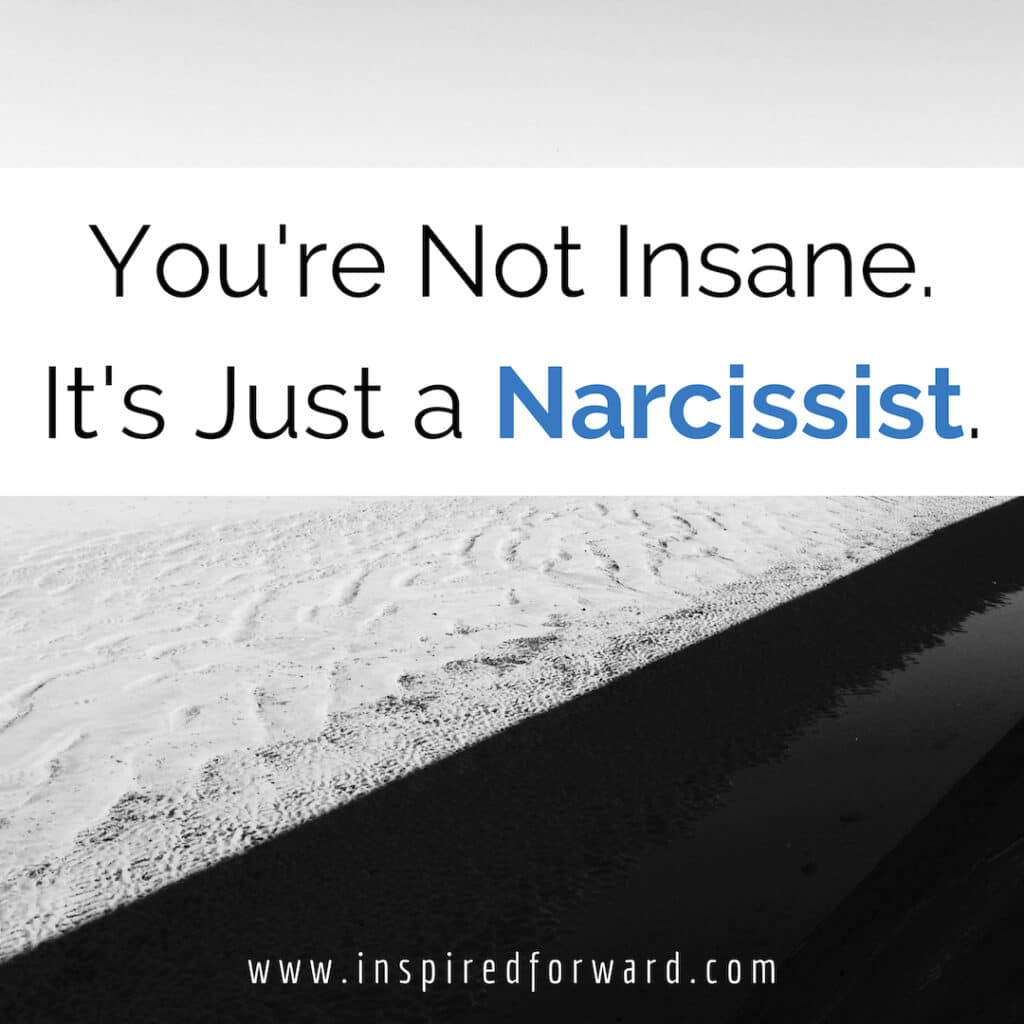 Is someone in your life causing self-doubt, uncertainty, or manipulating you? Don't worry, you're not insane. It's just a narcissist.