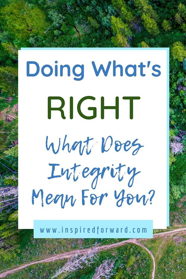 integrity-pin-post-resized