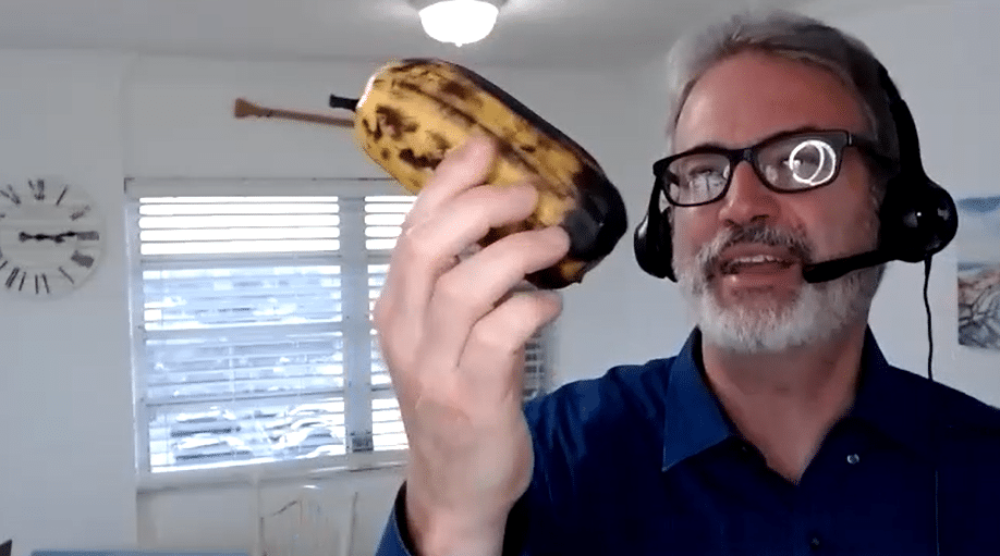 healthy food mindset banana thing 2